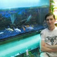 дмитрий, 37 лет, Овен, Томск